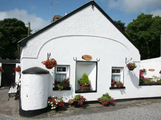 300 Year Old Post Office Cottage: Rural Setting Near Historical Town of Portumna