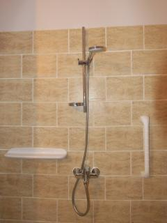 Shower with handrail