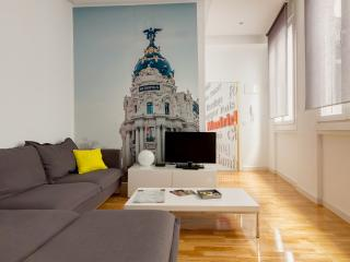 Wonderful apartment in the city center, Madrid