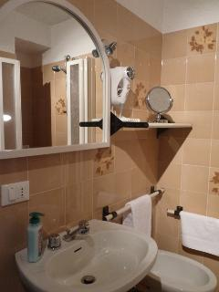 Bathroom with sink, toilet, bidet, shower box, washer dryer and hair dryer