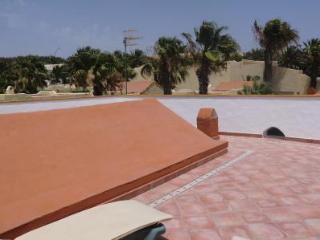 maison jumelée avec terrasses