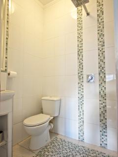 Ensuite to Master bedroom - wet room - shower, wash hand basin, mirror and toilet.