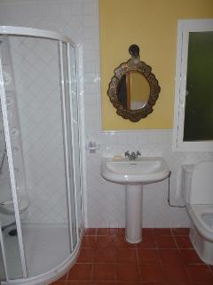 En-suite shower room (2010)