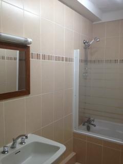 Modern bath plus shower