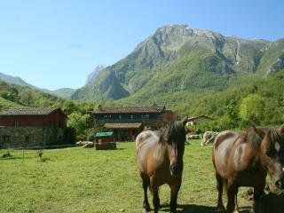 Casa rural con jacuzzi y chime, Ricabo