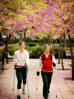 Nordik walking