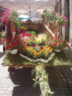 Flower Fair at Tournon