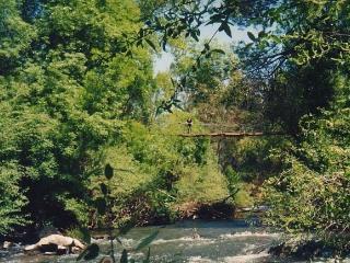 Entrada-Puente colgante