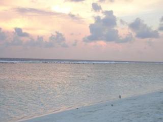 Beach Sunset, just 7 minutes walk away