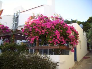 Perdika-Haus, Aegina Town