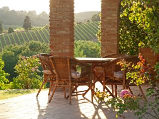 Country House Nazzano in Chianti area near San Gimignano, Siena e Firenze - Lu