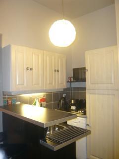 Bar + kitchen  wz fridge deepfreezer, microwave oven + convection oven + 2burnerstove