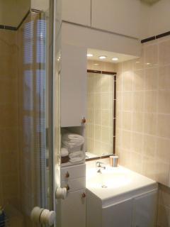 bathroom: washbasin & on the left, shower