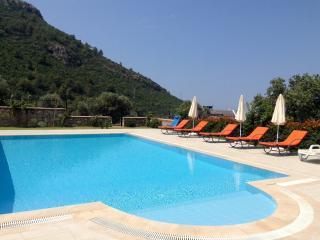 Mediterranean Beauty, Faralya