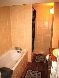 The bathroom with bath, shower, sink and toilet