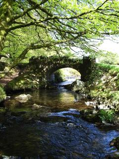 The Footpath Bridge in the Valley.