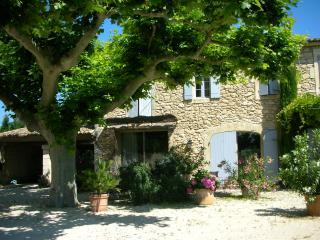 Mas Saint Pierre, près de L'Isle-sur-la-Sorgue, Les Vigneres