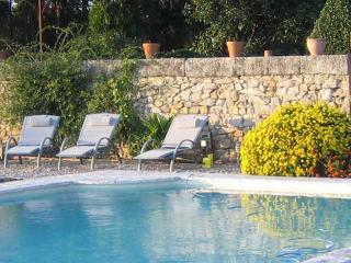 South France holiday rental with pool on vineyard, Montagnac