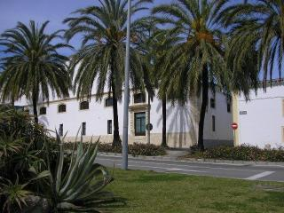 Loft Lujo Bodega Centro Jerez+ wifi + parking