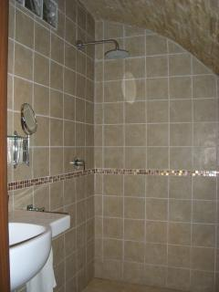 Wet room shower under the Medieval  brick vaulted ceiling in the apartment