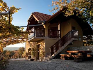 Vineyard cottage - Zidanica Brodaric, Metlika
