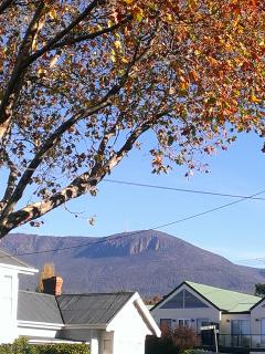 Stunning views of Mt Wellington from the shower!