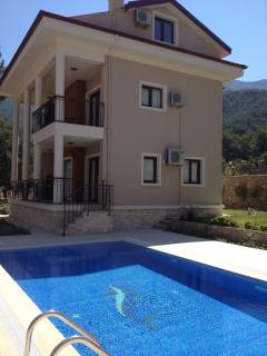 Villa with pool view
