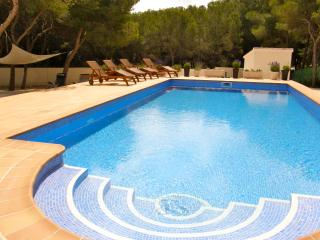 Large 10 x 5m pool with lighting and Roman style steps