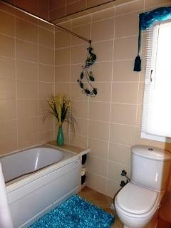 Downstairs has a spacious family bathroom with overhead shower. 2014