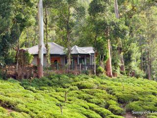 Sunnyside Lodge, Ella