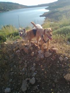 at Mavrokolimpos Dam