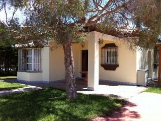 Chalet con Piscina salada privada, barbacoa, jardin, 3 dormitorios y 2 baños