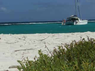 Croisieres Grenadines Caraibes  voiliers catamaran, Sainte-Luce