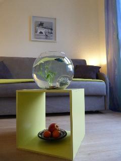 Flat Fish Location studio Grange Blanche Monplaisir Leon Berard