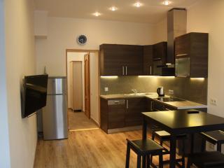 Brivibas apartment in center, Riga