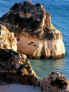 Algarve Beech
