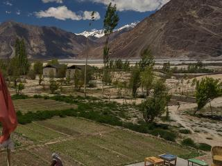 Nubra Valley View