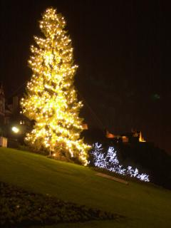 Christmas tree - top of The Mound