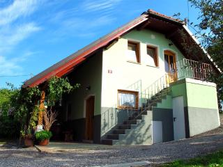 Vineyard cottage - Zidanica Gorsin, Novo Mesto