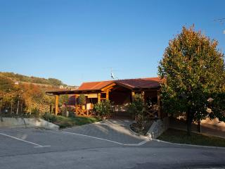 Vineyard cottage - Zidanica Jakljevic, Metlika