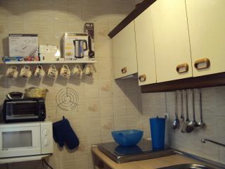Cocina con vitrocerámica, horno y microondas. Batidora, calienta agua, sandwichera.