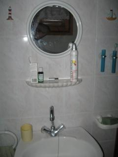 Downstairs toilet and shower room