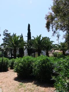 Part of garden in front of the villa
