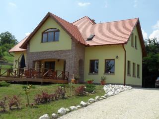 Villa Vinea, close to Budapest