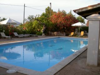 Outdoor area and swimming pool with sun loungers