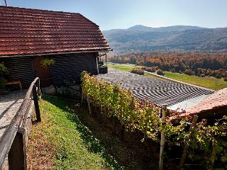 Vineyard cottage - Ludvikov hram, Dvor