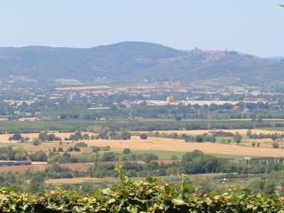 Casa Gelsomino, Rigutino