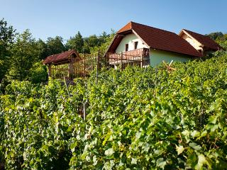 Vineyard cottage - Zidanica Lustek