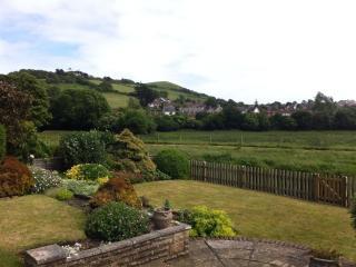 View from rear garden across River Asker & Askers Meadows