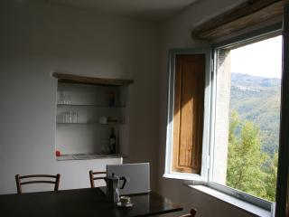 Main kitchen window